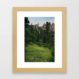 Black Hills National Forest 2 Framed Art Print