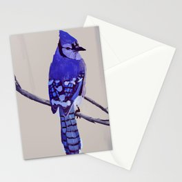 Blue Jay Bird Stationery Cards