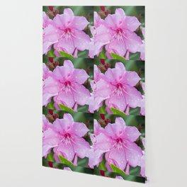 Pink Flora Wallpaper