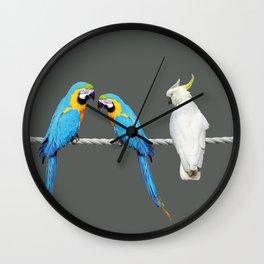 Macaw - Kakadu sitting on rope Wall Clock