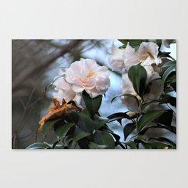 Flower No 3 Canvas Print