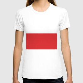 Flag of Atlantico (Colombia) T-shirt