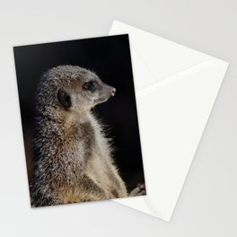Meerkat guard Stationery Cards