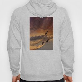 flight of angels Hoody