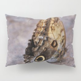 Giant Owl Butterfly asleep on the stone Pillow Sham