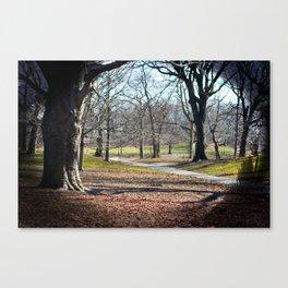 park. Canvas Print