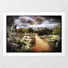 Down the Beaten Path Art Print