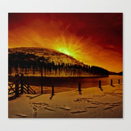 Kings Tree Winter Dawn Canvas Print