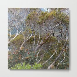 Only Natural Metal Print