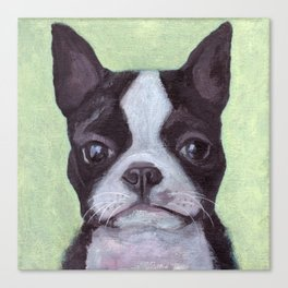 Jackson the Dog Canvas Print