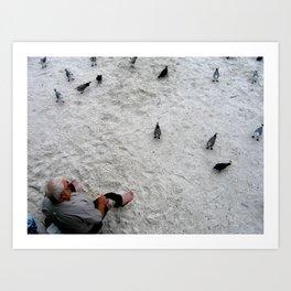 Feed the Birds - St. Pete Beach, Florida Art Print