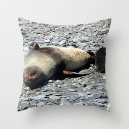 Mother Fur Seal and Pup Throw Pillow