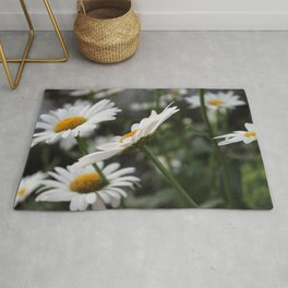 Side View of a Daisy Rug