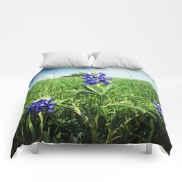 Texas Bluebonnet Flowers Comforters
