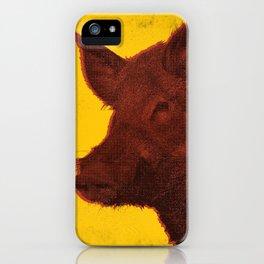Invasive Species Series: Feral Hog iPhone Case