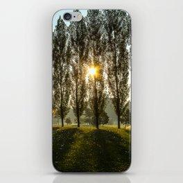 Penn State Arboretum iPhone Skin