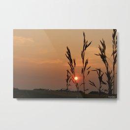 Alberta Skies Metal Print