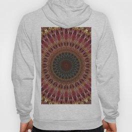 Mandala in brown and red tones Hoody