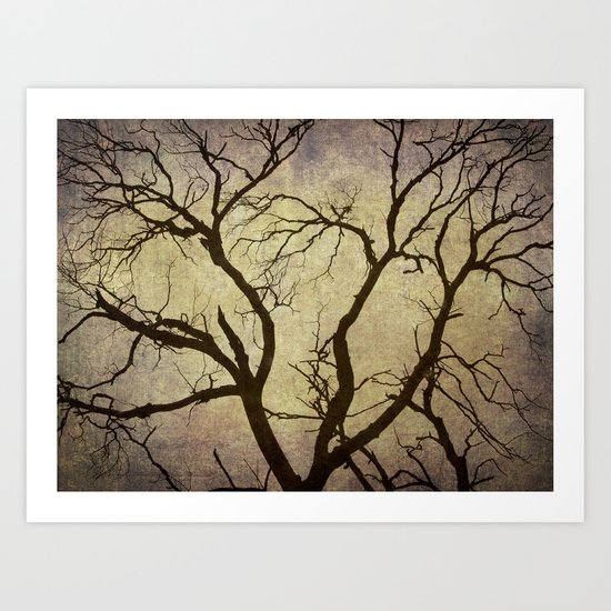 Trees are the lungs of the world Art Print