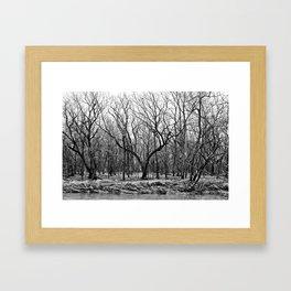 Dead Fall Framed Art Print