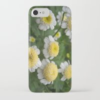 daisies iPhone & iPod Cases featuring Daisies by Vitta