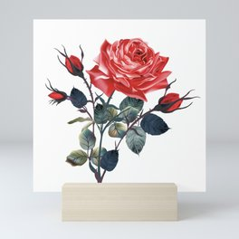 Beautiful vector realistic rose in vintage antique high detailed style Mini Art Print