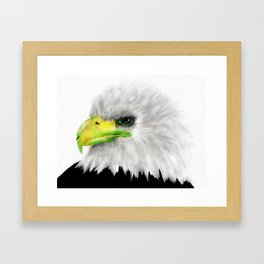American Bald Eagle Framed Art Print