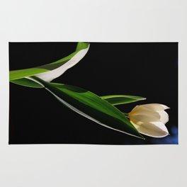 Tulipano Rug