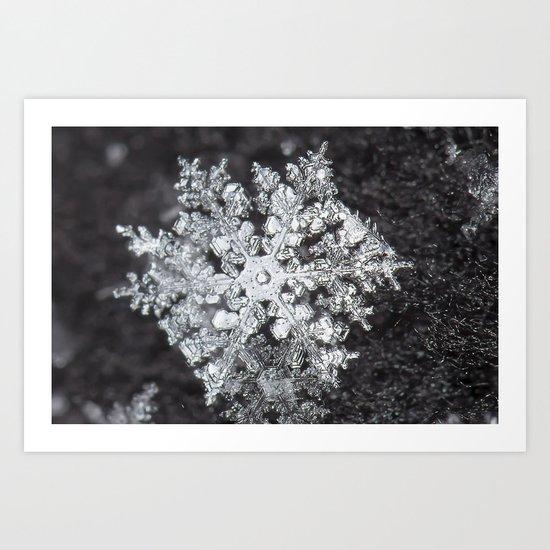 Sowflake closeup #4 Art Print