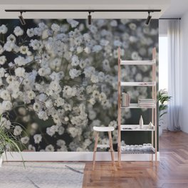 Valentine's Day Roses 19 Wall Mural