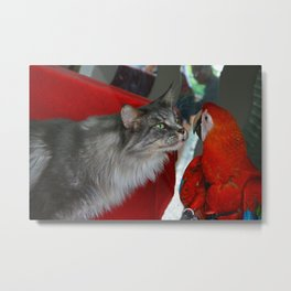 Cat and Parrot Metal Print