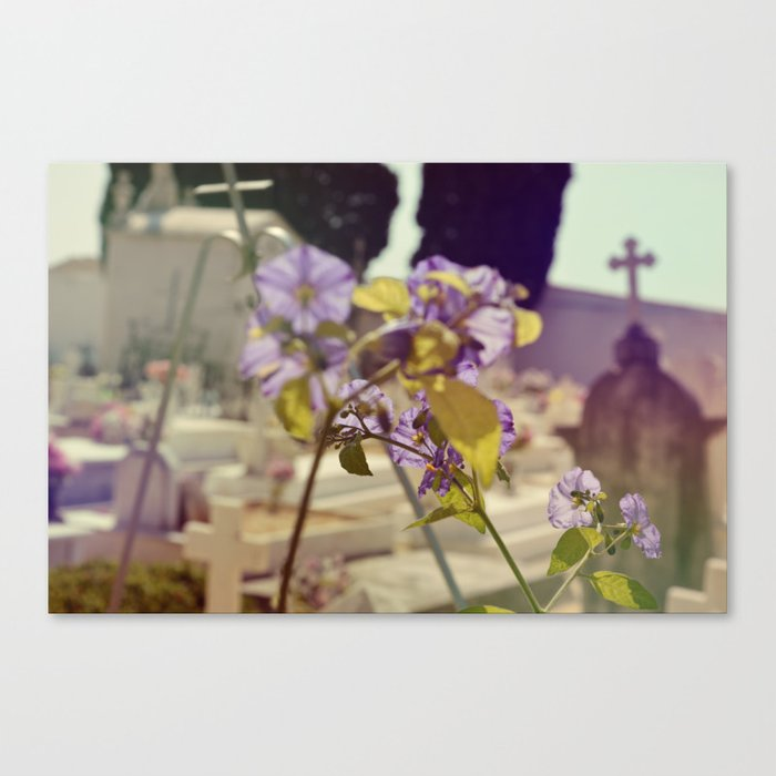 Amongst the Dead Canvas Print
