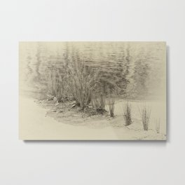 Beautiful river grasses in sepia Metal Print