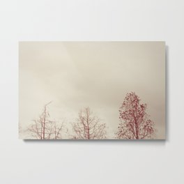 Exhale. Metal Print