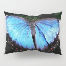 Blue Morpho Pillow Sham