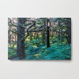 Vibrant Mossy Fields Metal Print