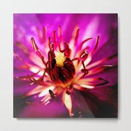 Purple flower with raindrops Metal Print