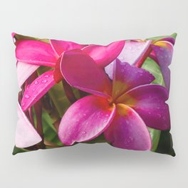 Pink Plumerias close up IV Pillow Sham