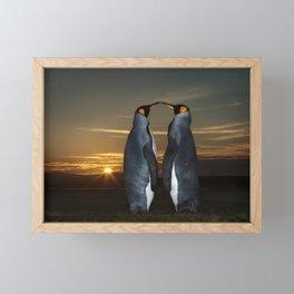 King penguins at sunset Framed Mini Art Print