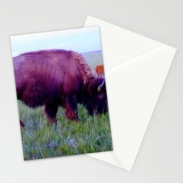 Pte Oyate, Buffalo Nation Stationery Cards