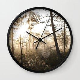 Spiderweb in sunrise Wall Clock