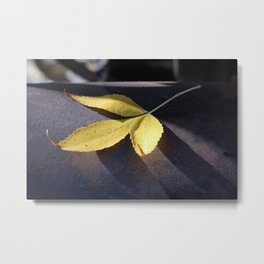 Yellow Leaf on Leather Surface Metal Print