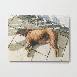 Sleeping Dogs Metal Print