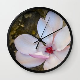 Magnolia by Teresa Thompson Wall Clock