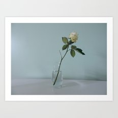 A Single Flower Art Print