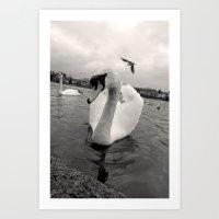 black swan Art Prints featuring Swan by Stina Strangis