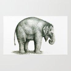 Baby Elephant (2) g008 Rug