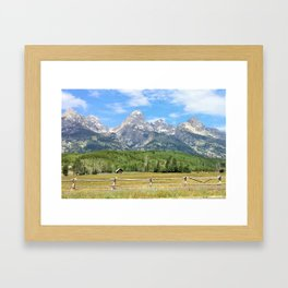 Grand Teton National Park Summer Framed Art Print