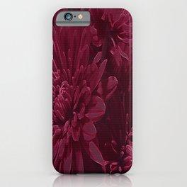 Burgundy Chrysanthemums iPhone Case