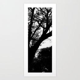 Dark Cementery Trree Art Print